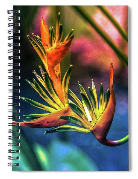 Vibrant Jungle Bird Spiral Notebook