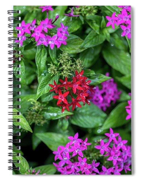 Vibrant Petals Spiral Notebook
