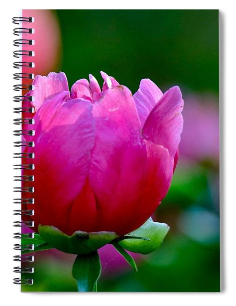 Vibrant Pink Peony Spiral Notebook