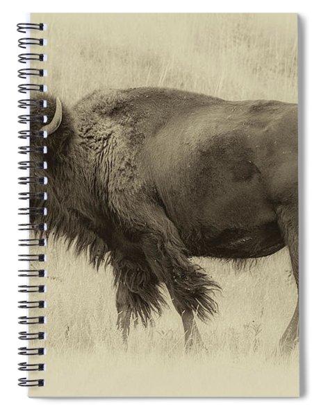 Vintage Bison I Spiral Notebook