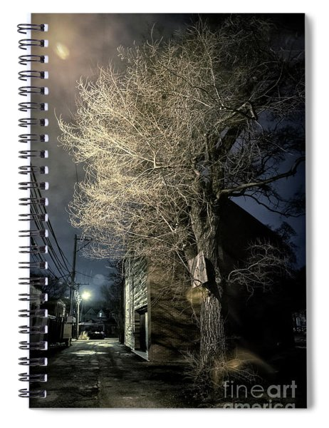 If Trees Could Talk Spiral Notebook