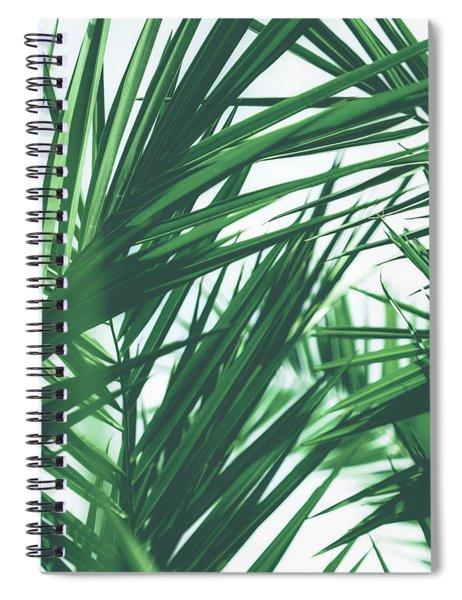 Vintage Palms IIi Spiral Notebook
