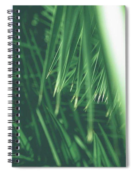 Vintage Palms Iv Spiral Notebook