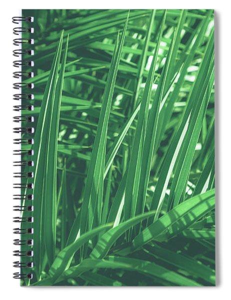 Vintage Palms V Spiral Notebook