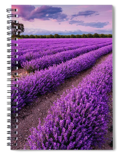 Violet Dreams Spiral Notebook