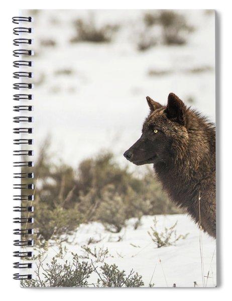 W11 Spiral Notebook