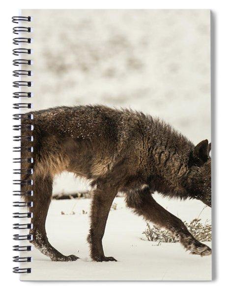 W13 Spiral Notebook