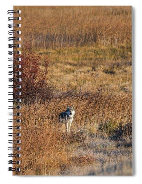 W2 Spiral Notebook