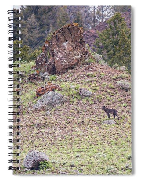 W21 Spiral Notebook
