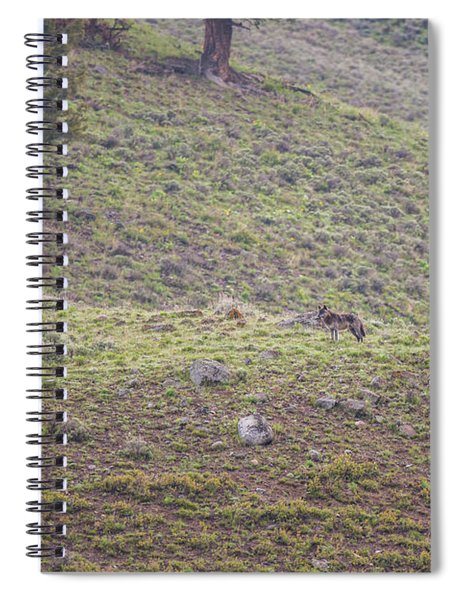 W25 Spiral Notebook