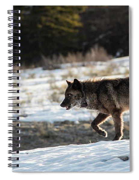 W27 Spiral Notebook