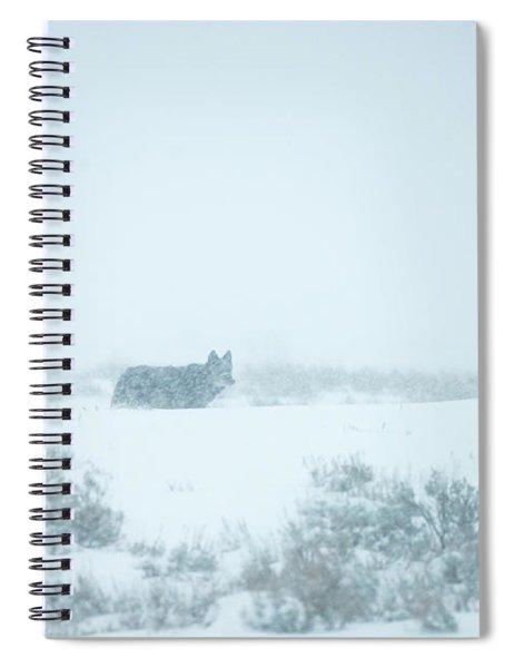 W29 Spiral Notebook