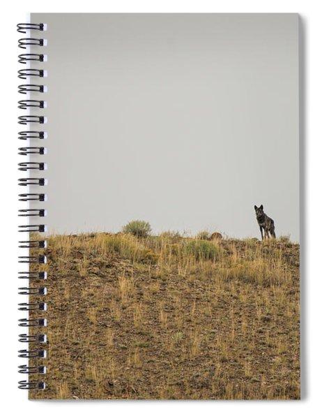 W31 Spiral Notebook