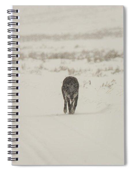 W33 Spiral Notebook
