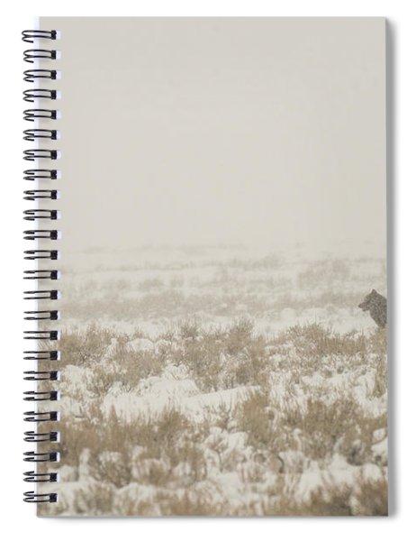 W34 Spiral Notebook