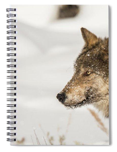W37 Spiral Notebook
