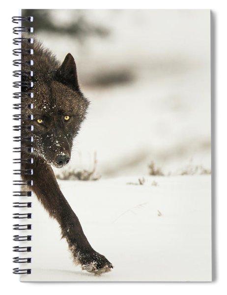 W43 Spiral Notebook