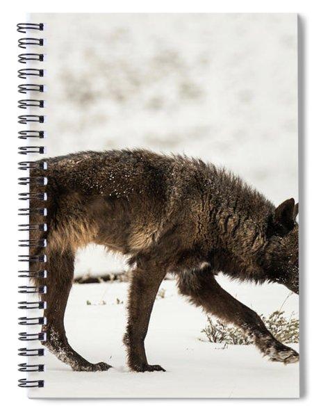 W44 Spiral Notebook