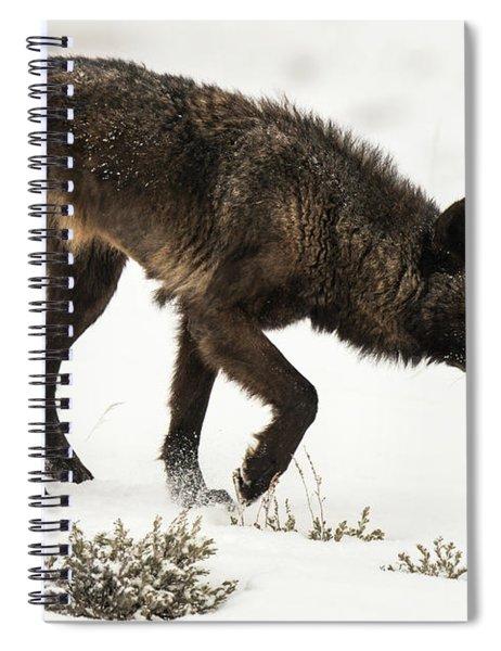 W47 Spiral Notebook