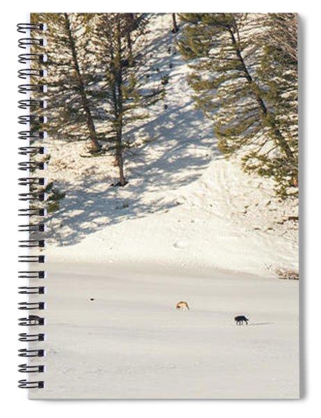 W48 Spiral Notebook