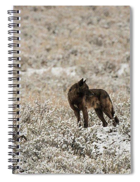 W49 Spiral Notebook
