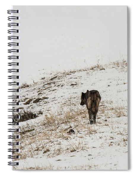 W52 Spiral Notebook