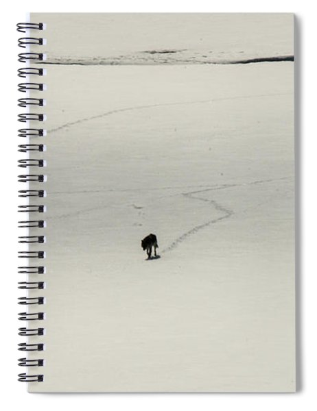W54 Spiral Notebook