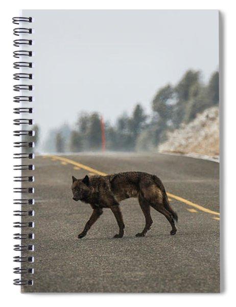 W55 Spiral Notebook