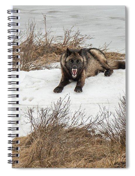 W57 Spiral Notebook