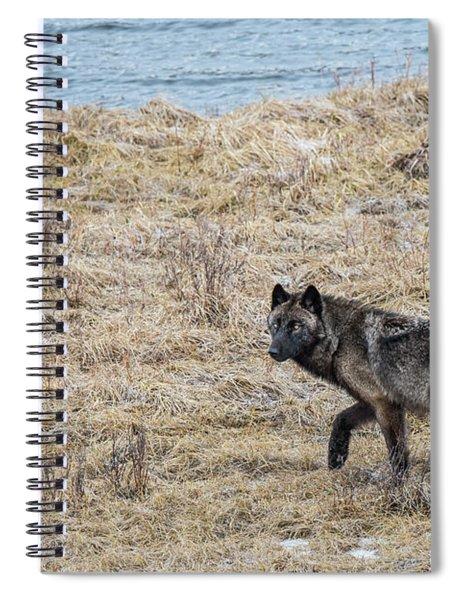 W58 Spiral Notebook