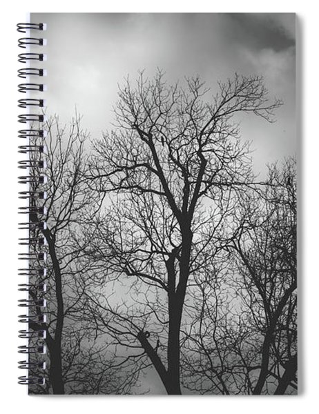 Waiting Bird Spiral Notebook
