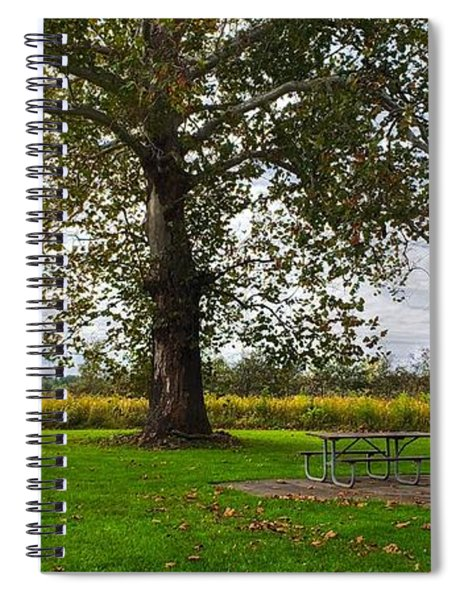 Walnut Woods Tree - 1 Spiral Notebook