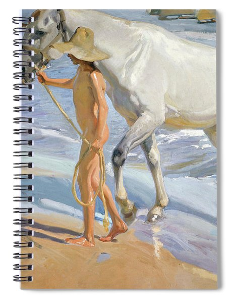 Washing The Horse, 1909 Spiral Notebook