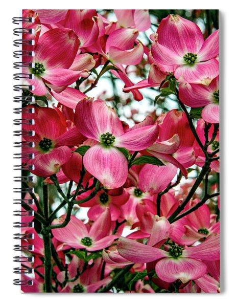 Washington State Magnolia Spiral Notebook by Mae Wertz
