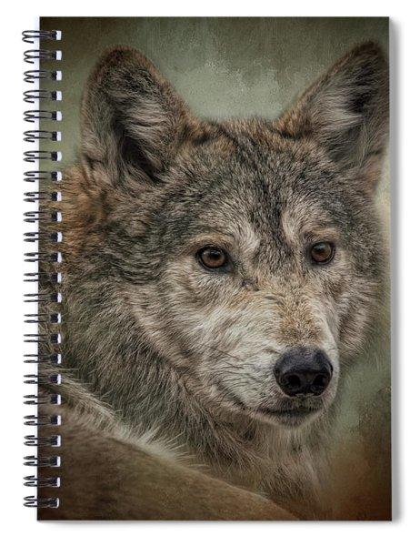 Watchful Spiral Notebook