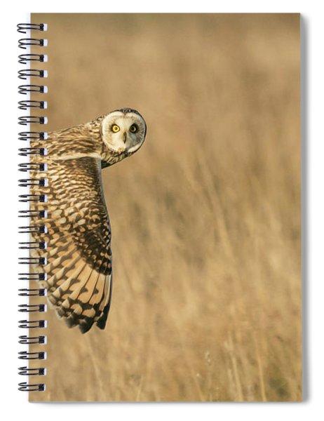Watching You Watching Me Spiral Notebook