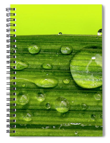 Water Drops On Leaf Spiral Notebook
