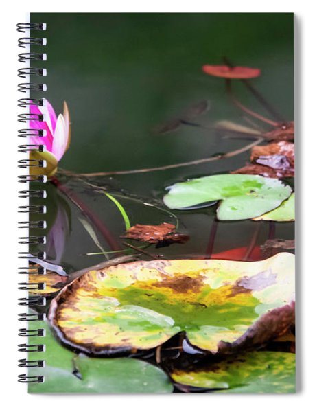 Water Lily #1 Spiral Notebook