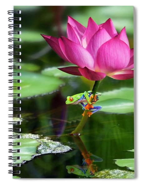 Water Lily And Little Frog Spiral Notebook