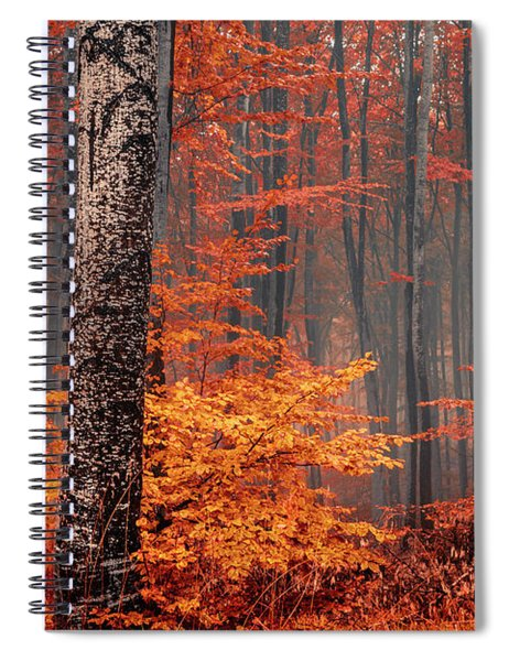 Welcome To Orange Forest Spiral Notebook