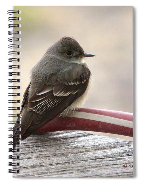 Western Wood Pewee Spiral Notebook