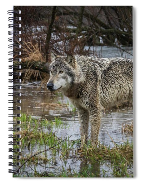 Wet Feet Spiral Notebook