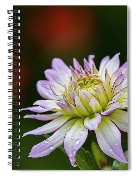 Wet Petals Dahlia Spiral Notebook