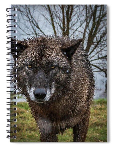 Wet Wolf Spiral Notebook