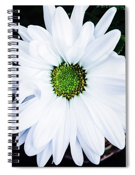 White Daisy Spiral Notebook