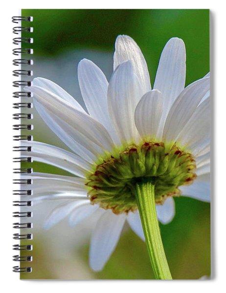 Fresh As A Daisy Spiral Notebook