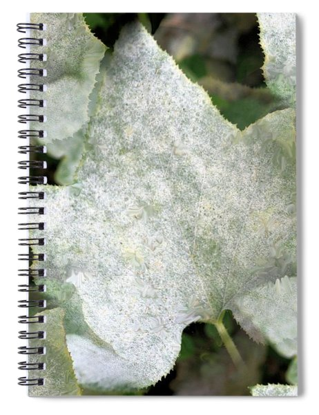 White Leaves Spiral Notebook