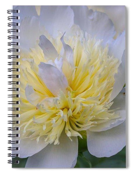 White Peony Spiral Notebook