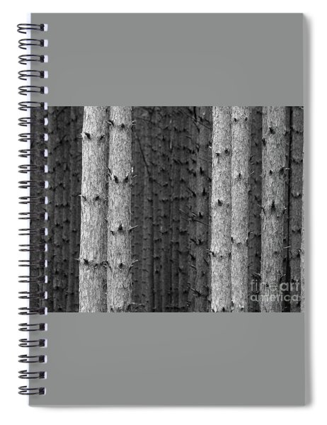 White Pines Black And White Spiral Notebook
