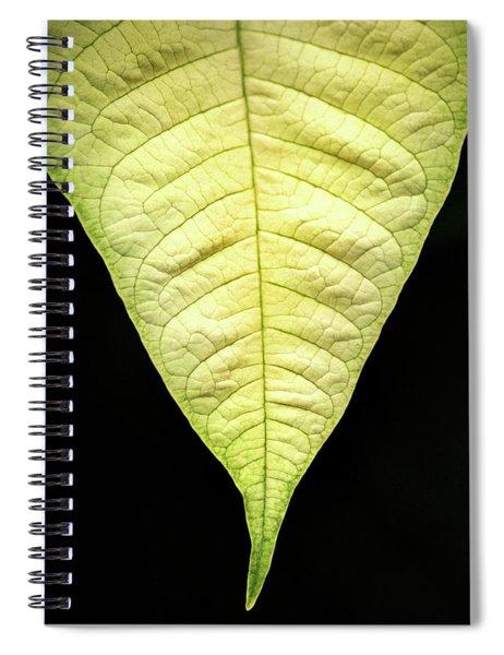 White Poinsettia Leaf Spiral Notebook